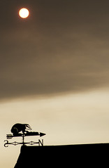 Red sun and badger weather vane