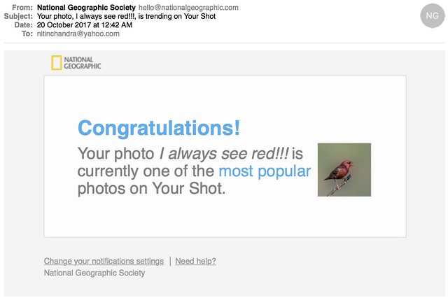 Your photo I always see red is trending on Your Shot