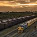 Class 37 37025 & 37421 Colas_PA230106