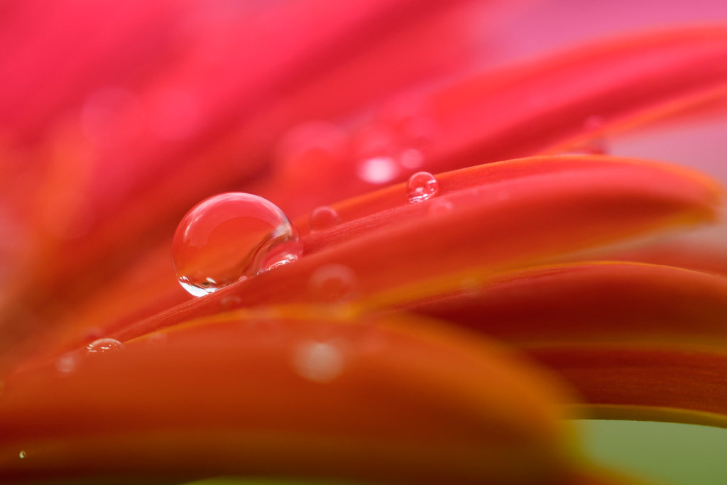 Drops and colours