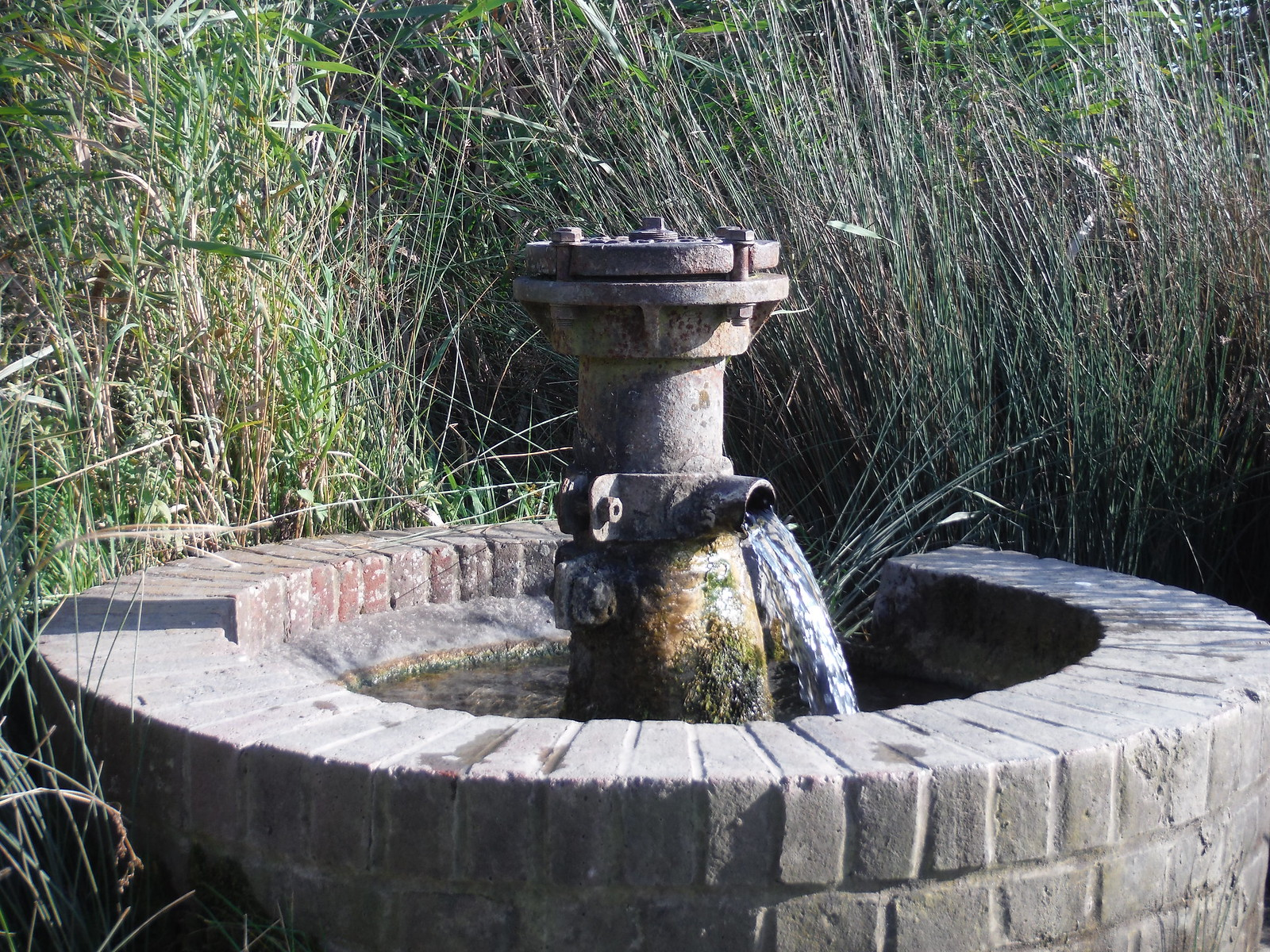 Artesian Well by car park at Oare Marshes Nature Reserve SWC Walk 299 - Teynham to Faversham
