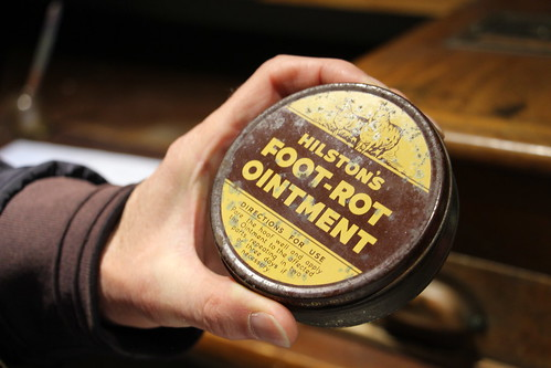 278/365 Foot Rot Ointment