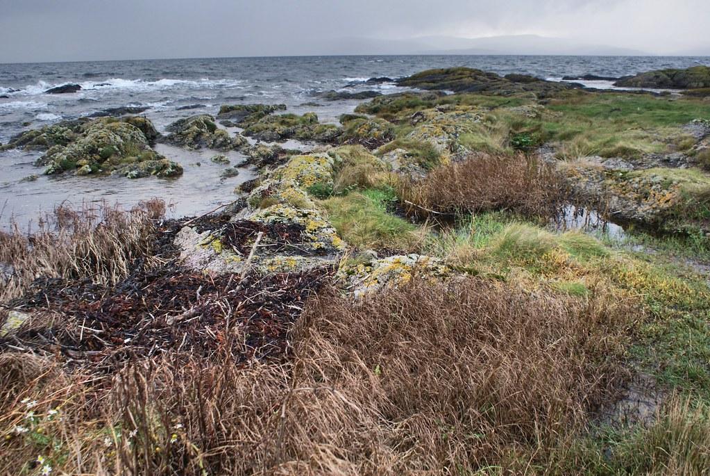 Paysage de l'île d'Arran en Ecosse. Côté mer.