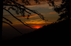 KingsCanyon-SequoiaNatParks-24