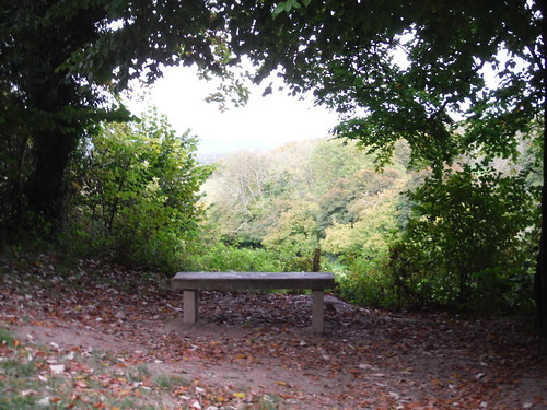 QE Country Park - Bench with View