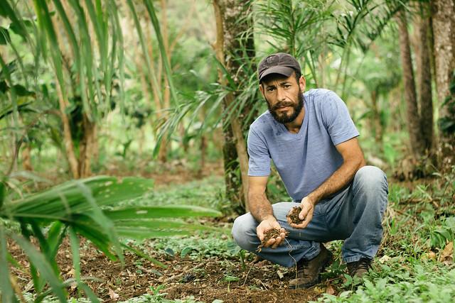 Acampamento ocupa parte da APA de Guaraqueçaba e desde 2003 concilia a produção de alimentos livres de agrotóxicos  - Créditos: Júlia Rohden