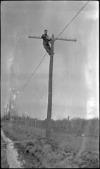 Bell Telephone, Winona, Ontario - employee standing at top of telephone pole