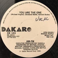 AM-FM:YOU ARE THE ONE(LABEL SIDE-A)