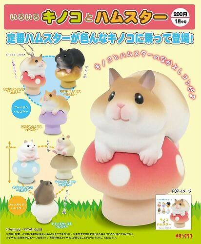 奇譚俱樂部 「蘑菇&倉鼠」逗趣夥伴登場!いろいろキノコとハムスター