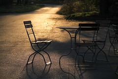 Stühle - Chairs
