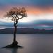 Milarrochy Bay Sunset by roseysnapper