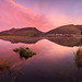 Tewet tarn sunrise reflection by alf.branch