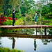 Sinouk Coffee Resort Wedding Photography | NET-Photography Thailand Photographer by NET-Photography | Thailand Photographer