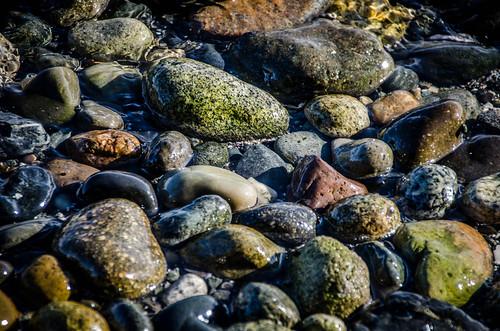 Samish Beach Rocks-004