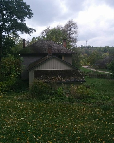 House and leaves #toronto #todmordenmills #donvalley #house #latergram