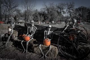 Happy Hallowe'en/ Feliz dia de los Muertos