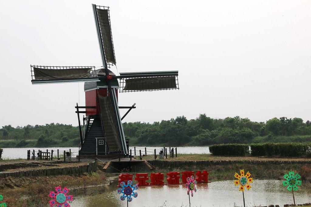 荷蘭村 (7)