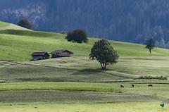 Kastelruth's hills