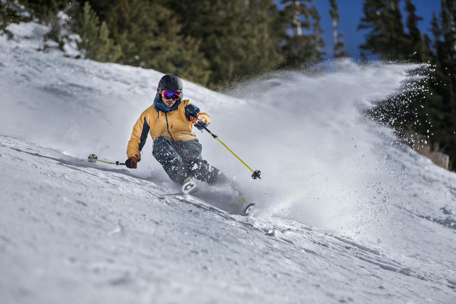 6d95bfc0e Skialpové lyže podle značek 2017-18. Novinky, zajímavosti, informace ...