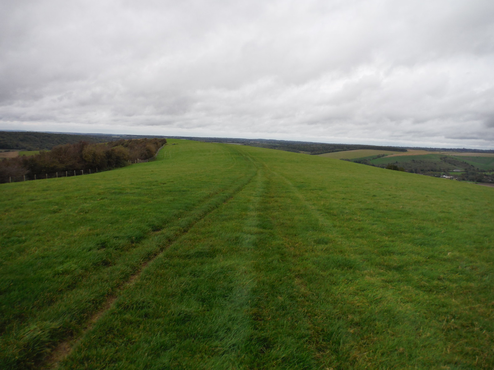 Small Down Ridge SWC Walk 183 - South Downs Way Section 2: West Meon to Petersfield (East Meon Lunch Pubs Diversion)