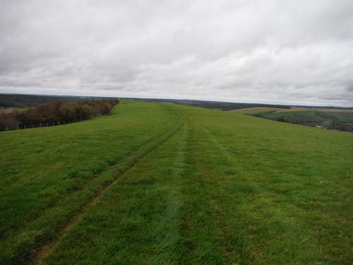 Small Down Ridge