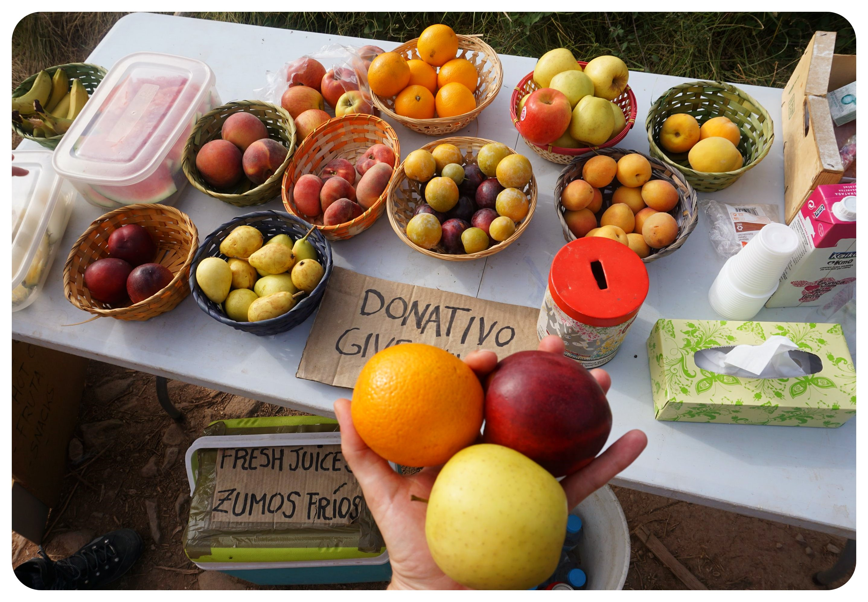 Camino fruit stand