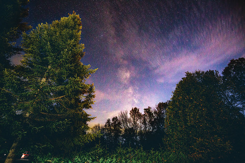 milkyway trenthills ontario canada sky skyscape stars clouds trees nature night