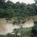Small photo of River Ogun carrying silt 30m. North ibadan