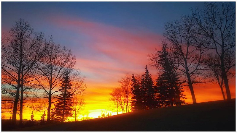 🌅 #yysunset #yycskies #sunset . It has been said, 'time heals all wounds.' I do not agree. The wounds remain. In time, the mind, protecting its sanity, covers them with scar tissue and the pain lessens. But it is never gone. - Rose Kennedy . . . .