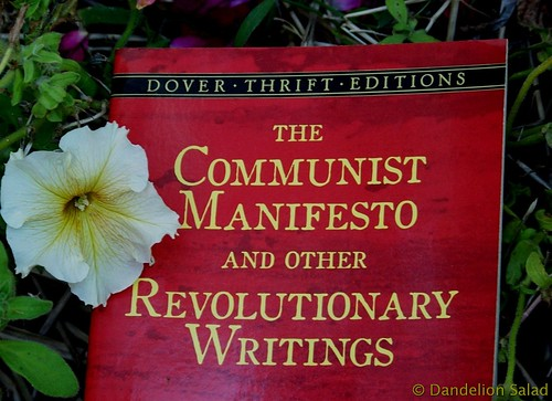 The Communist Manifesto by Karl Marx Bookcover