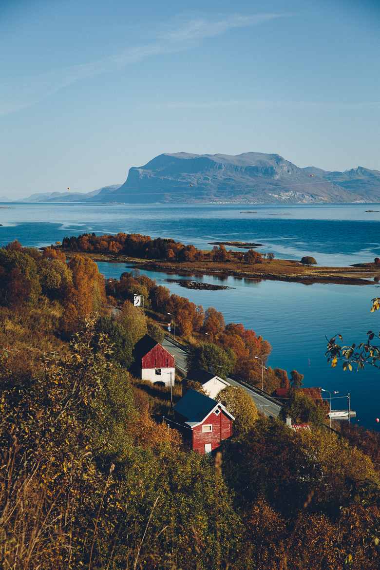 Roadtrip till Lofoten | Cashew Kitchen