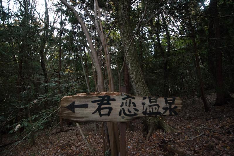 20151121_扇山_0495.jpg