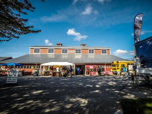 Skagit County Yard Sale-009