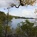 Lake Windermere, Cumbria  3