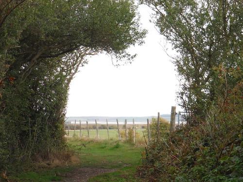 Towards the seawall