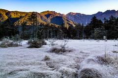 Kamikochi frost morning