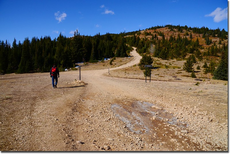 Forest road 183.1A Bypass fork near 10,780'
