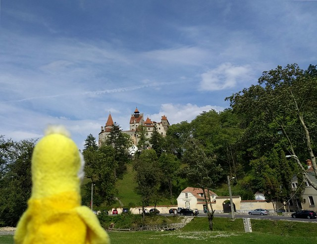 "Swami viewing ""Dracula's Castle"" in Transylvania"