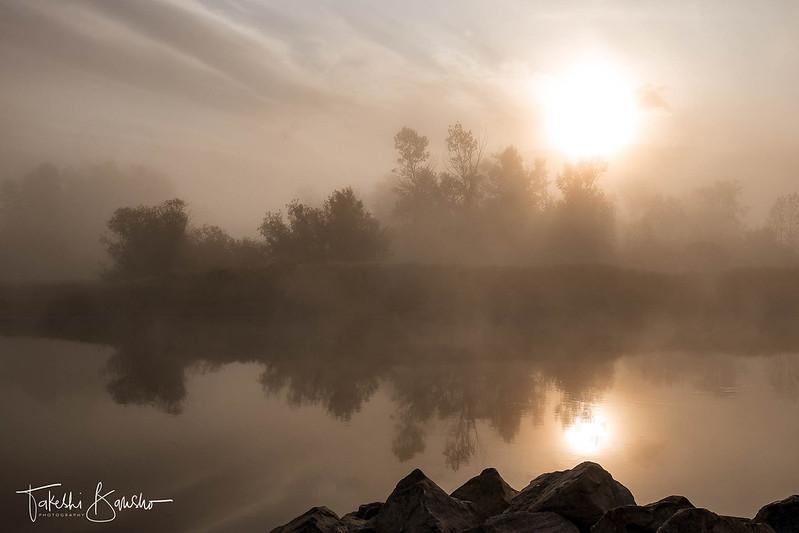 Foggy morning #2