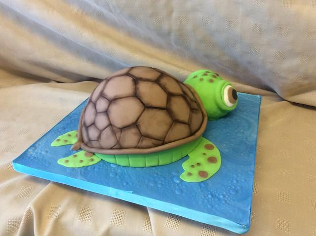Tiny Tim Turtle cake, Apple iPad Air, iPad Air back camera 3.3mm f/2.4