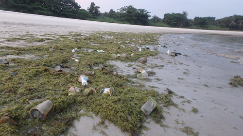 Litter on the shore at Seringat-Kias