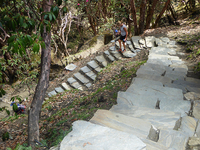 A typical trekking trial in Annapurna Conservation Area which is made easier to traverse by bring paved with large paving slabs.