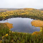 Riipi in colors near Mäntyvaara