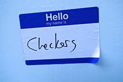 Checkers, New York, NY