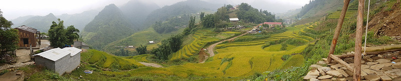 Sapa, Cat Cat Village - rice fields