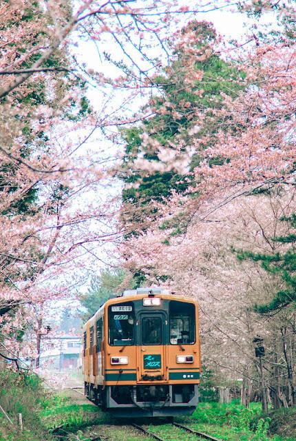 7 tokyo