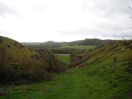 Down the coombe we look