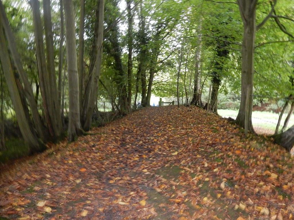 Raised path Haywards Heath Circular