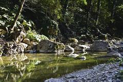 River Chepsi