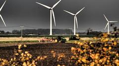 EyeEm Selects Sport Wind Turbine Wind Power Competition Night Competitive Sport Mammal Outdoors Sky People Sports Team John Deere Farm Life Farming Vehicles Farmporn Farming, Farmer, Field Vegetables, Salad, Green, Sky, Clouds, Life, People, Outdoor, Hard